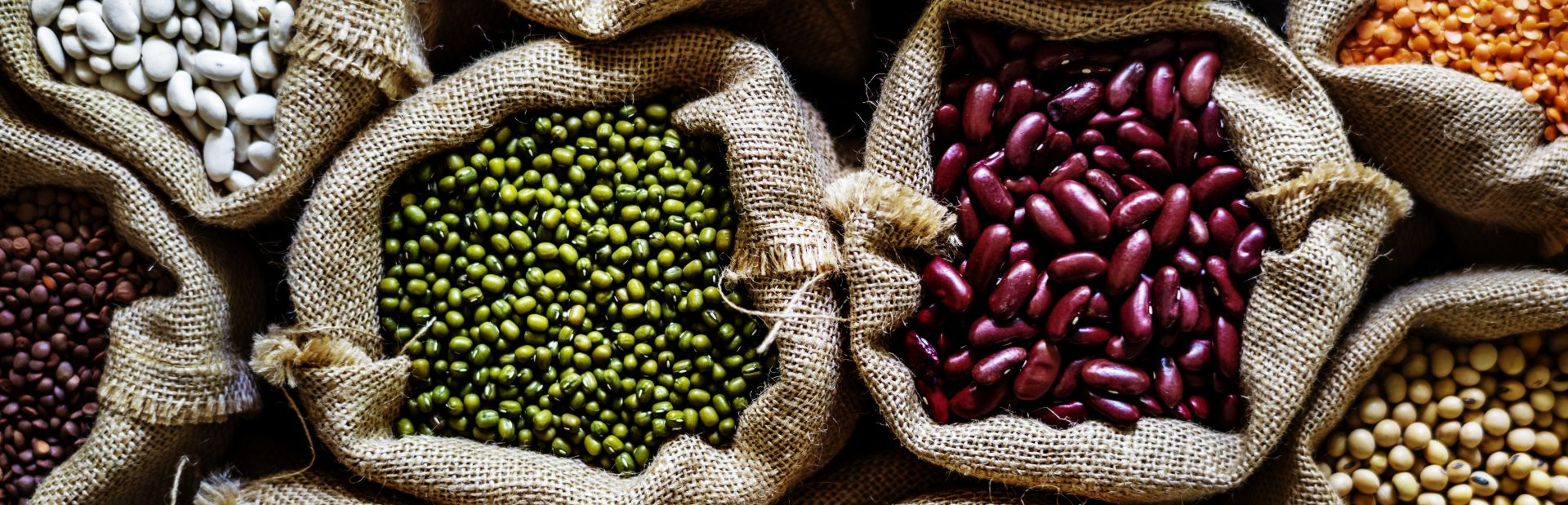 Beans are a lysine-rich food