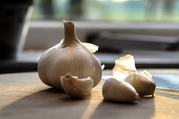 Garlic on a table - The stinking healer
