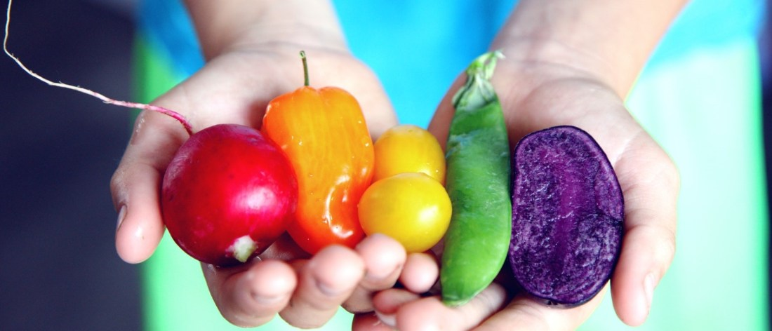 Holding foods for a better diet