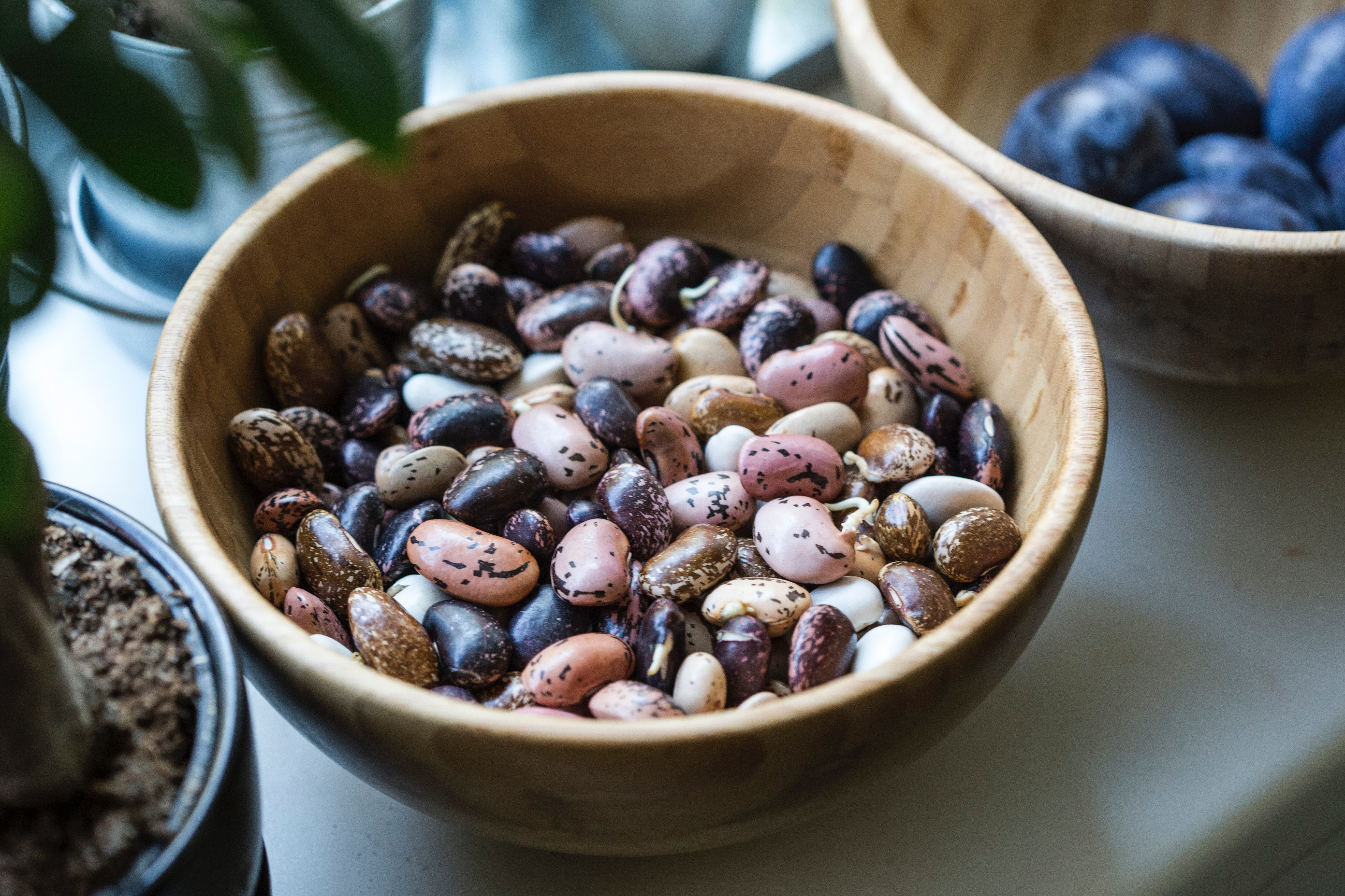 Beans, a great source of fiber