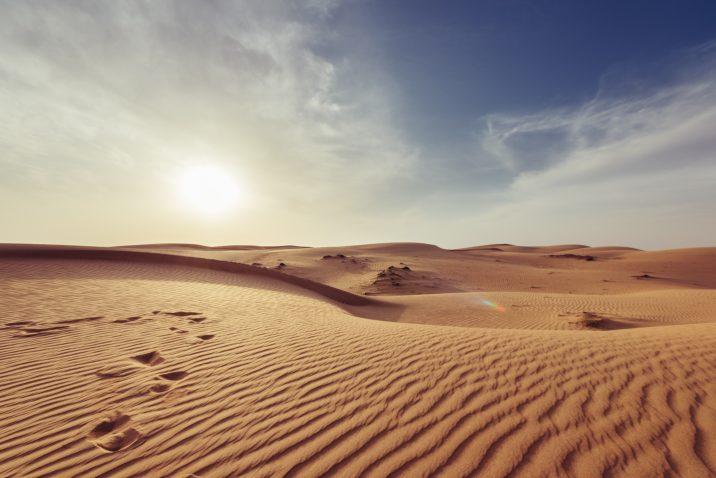 Dry dry desert