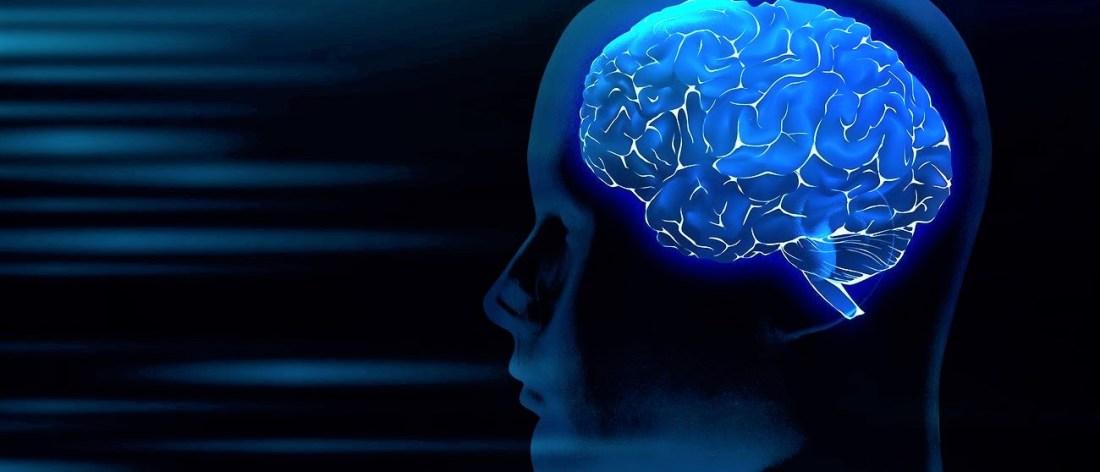 Brain Health - Digital image of a brain